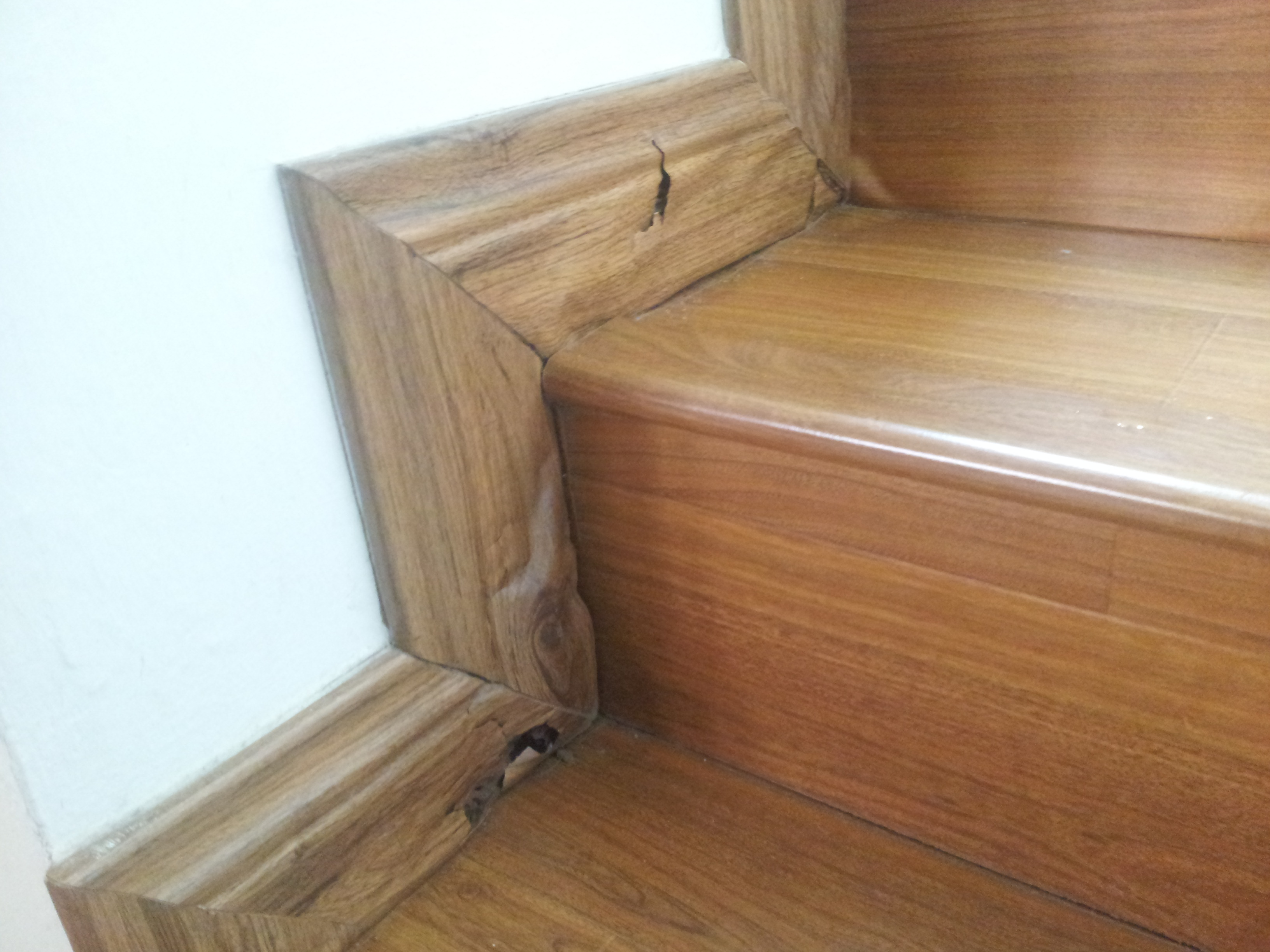 ALNASS Pest Control & Hygiene - Termite Attacking Wood Stair